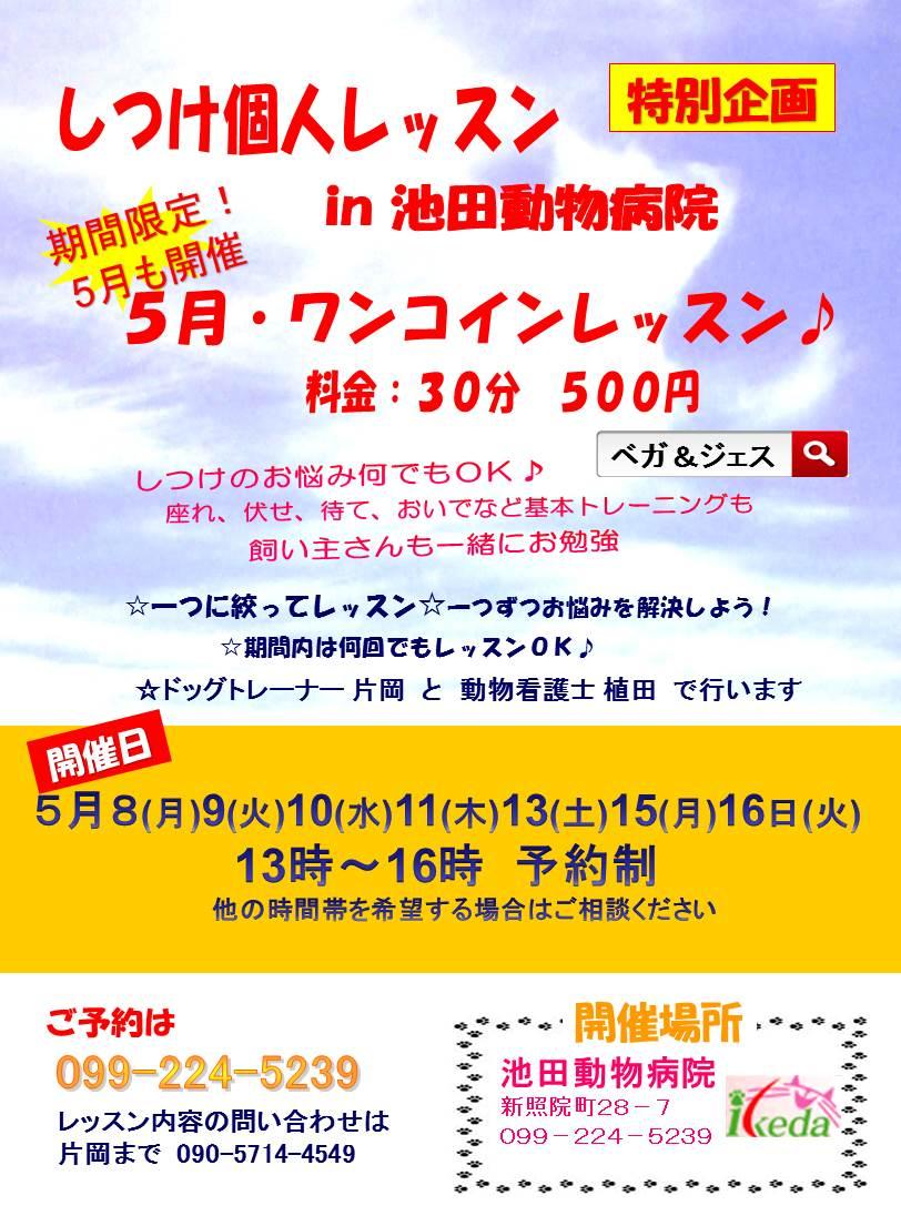 5月池田AHPh29しつけ広告添付
