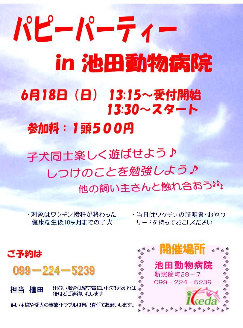 池田AHPh27しつけパピーパーティー6.18